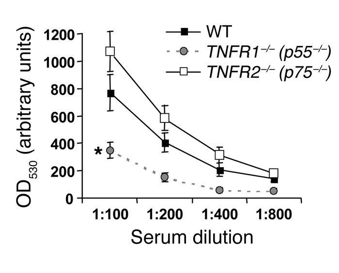 Circulating autologous mouse anti-rabbit IgG levels in wild-type, TNFR1-...