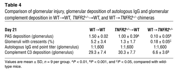 Comparison of glomerular injury, glomerular deposition of autologous IgG...