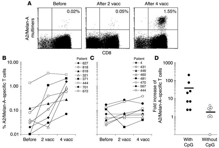 Rapid in vivo responses of Melan-A–specific T cells to vaccination (vacc...
