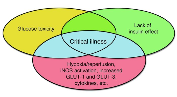 Jci How Does Blood Glucose Control With Insulin Save Lives In