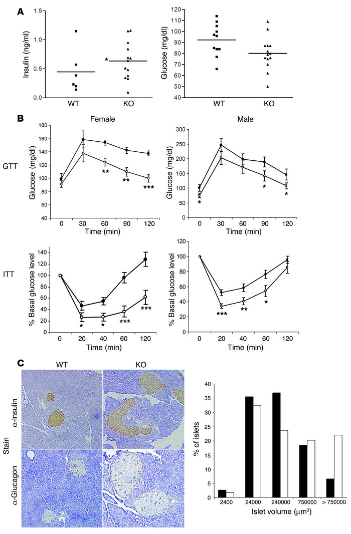 Increased insulin sensitivity in Socs7 –/ – mice. (A) Blood glucose (rig...