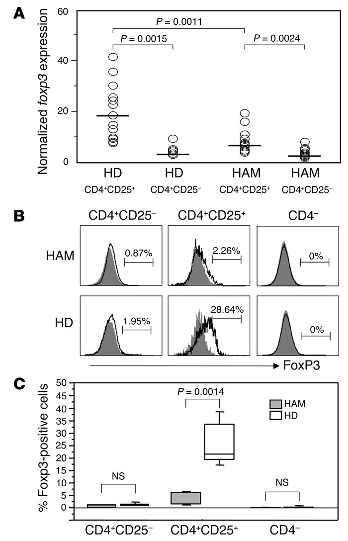Decreased Foxp3 expression in CD4+CD25+ T cells from HAM/TSP patients. (...