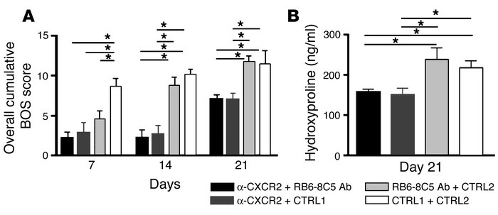 Neutrophil depletion plus anti-CXCR2 Ab treatment has no synergistic or ...