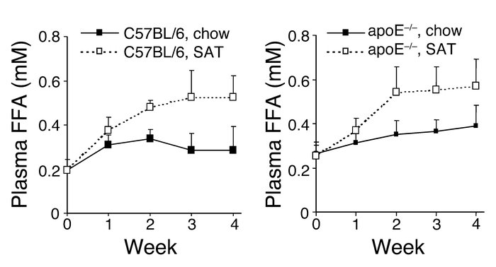 Effects of diet on plasma FFA levels in C57BL/6 and apoE–/– mice. Blood ...