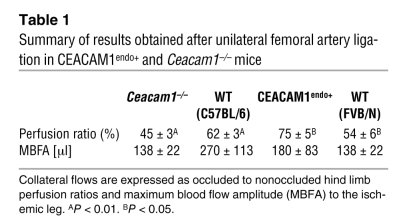 Summary of results obtained after unilateral femoral artery ligation in ...