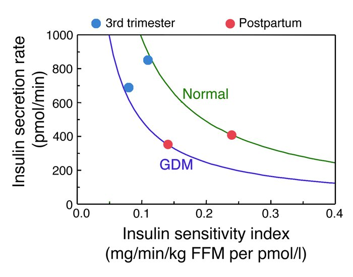 Insulin sensitivity-secretion relationships in women with GDM and normal...