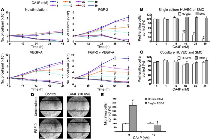 CA4P inhibits growth factor–induced endothelial cell proliferation and m...
