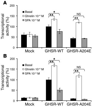 Ligand-mediated signal transduction of the A204E GHSR1a in transiently t...