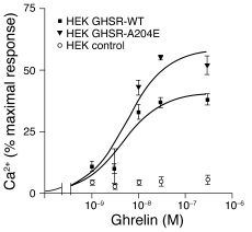 Calcium response to ghrelin of the WT and A204E GHSR1a receptors stably ...
