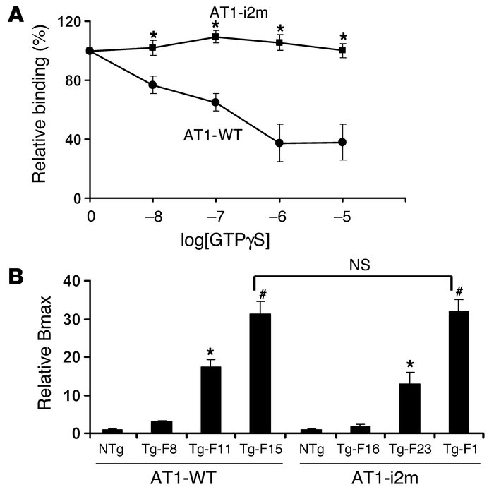 AT1 receptor binding assays. (A) Effects of GTPγS on 125I-Ang II binding...