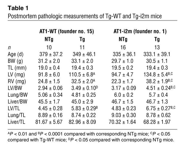 Postmortem pathologic measurements of Tg-WT and Tg-i2m mice
