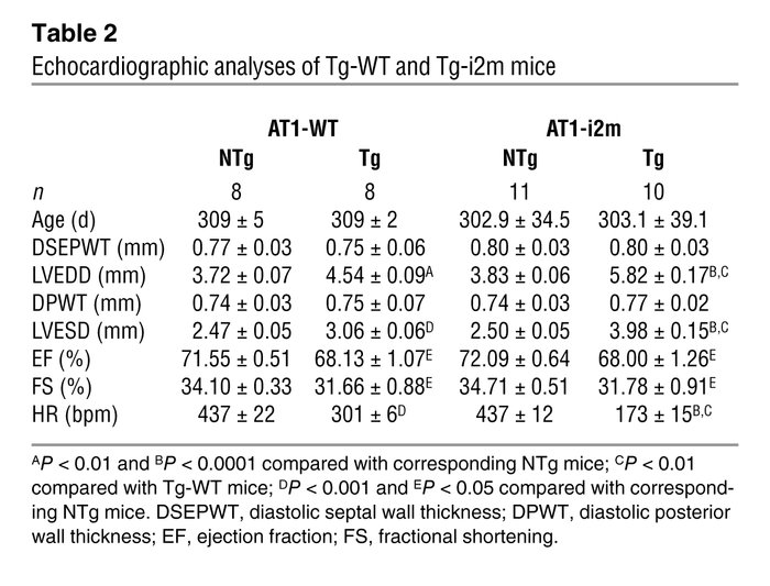 Echocardiographic analyses of Tg-WT and Tg-i2m mice
