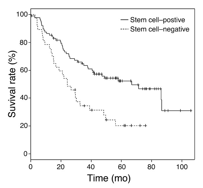 Stem cell–positive samples correlate with poor prognosis in lung adenoca...