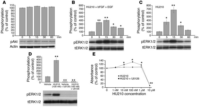 Effects of the cannabinoid HU210 on PI3K/Akt and ERK signaling in cultur...