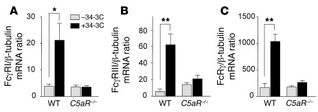 C5aR-dependent upregulation of FcγRI/RIII mRNA in Kupffer cells during A...