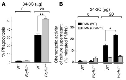 Enhanced phagocytosis and C5a production in PMs from FcγRII-deficient mi...