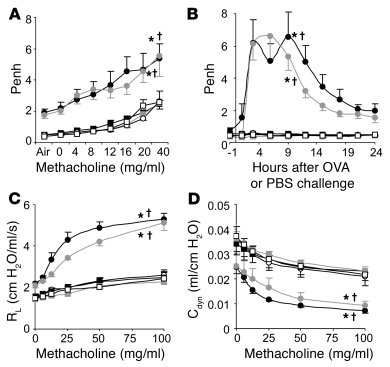 Airway responses following i.n. OVA challenge in a mouse model of chroni...