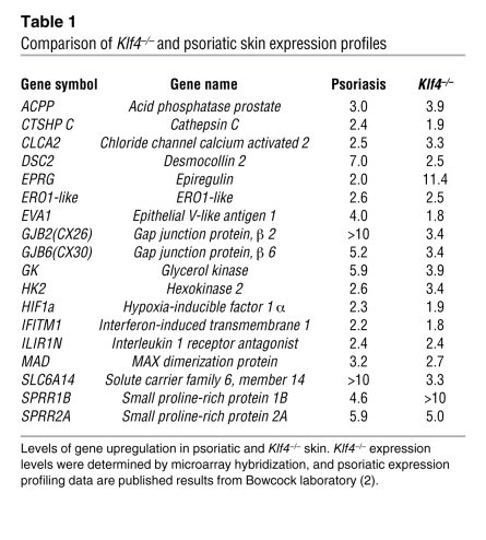 Comparison of Klf4–/– and psoriatic skin expression profiles            ...