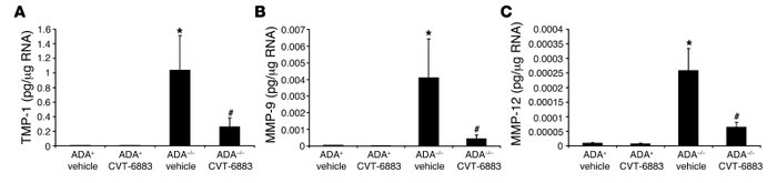 CVT-6883 treatment inhibits the expression of genes associated with alve...