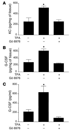 Prevention of KC and G-CSF expression by the classical PKC inhibitor Gö ...