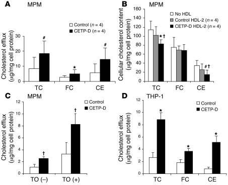 HDL-2–mediated mass cholesterol efflux from macrophages. Mouse peritonea...