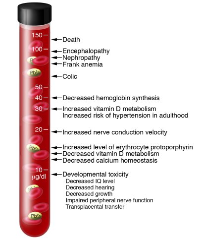Lowest observed effect levels              (μg/dl) of inorg...