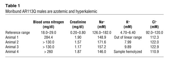 Moribund AR113Q males are azotemic and hyperkalemic