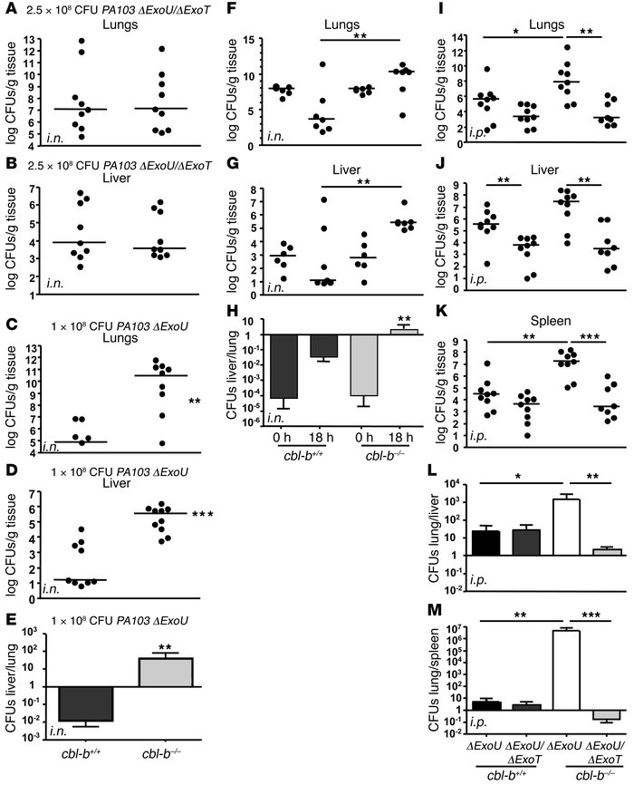 Cbl-b limits P. aeruginosa infection in an ExoT-dependent manner.       ...