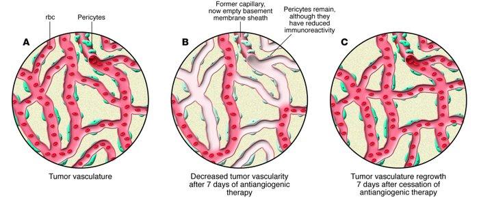download диагностика и лечение деструктивного панкреатита