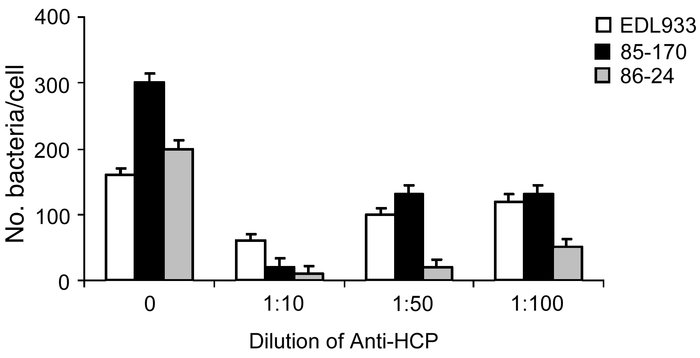 Inhibition of EHEC adherence by anti-HCP antibodies. EDL933 was preincub...