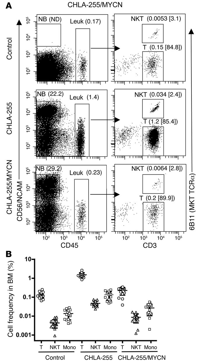 MYCN regulates NKT cell localization to neuroblastoma xenografts in BM o...