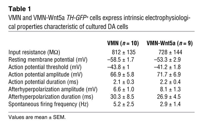 VMN and VMN-Wnt5a TH-GFP+ cells express intrinsic electrophysiological p...