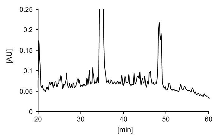 RP-HPLC chromatogram of HLA-DR–bound peptides purified from BAL cells us...