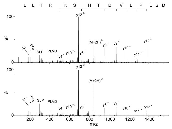Examples of MS/MS spectra. Collision-induced decay (CID) mass spectra of...