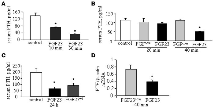FGF23 decreases serum PTH and PTH mRNA levels in vivo in short-term expe...