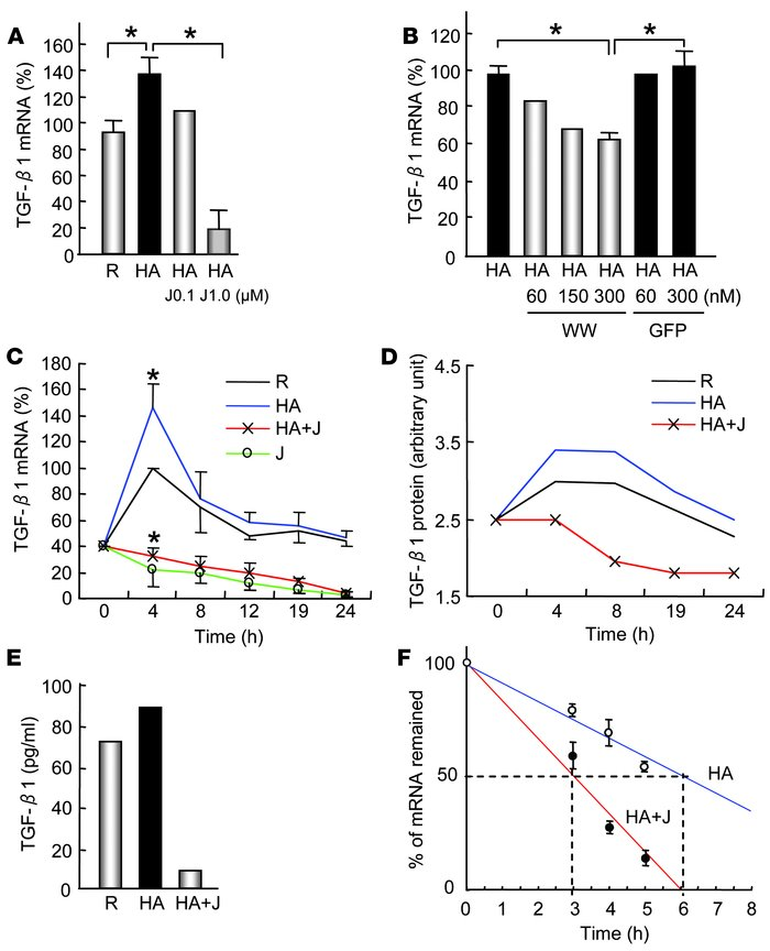 Pin1 is required for TGF-β1 mRNA expression. (A, B, C, and E) Reverse tr...