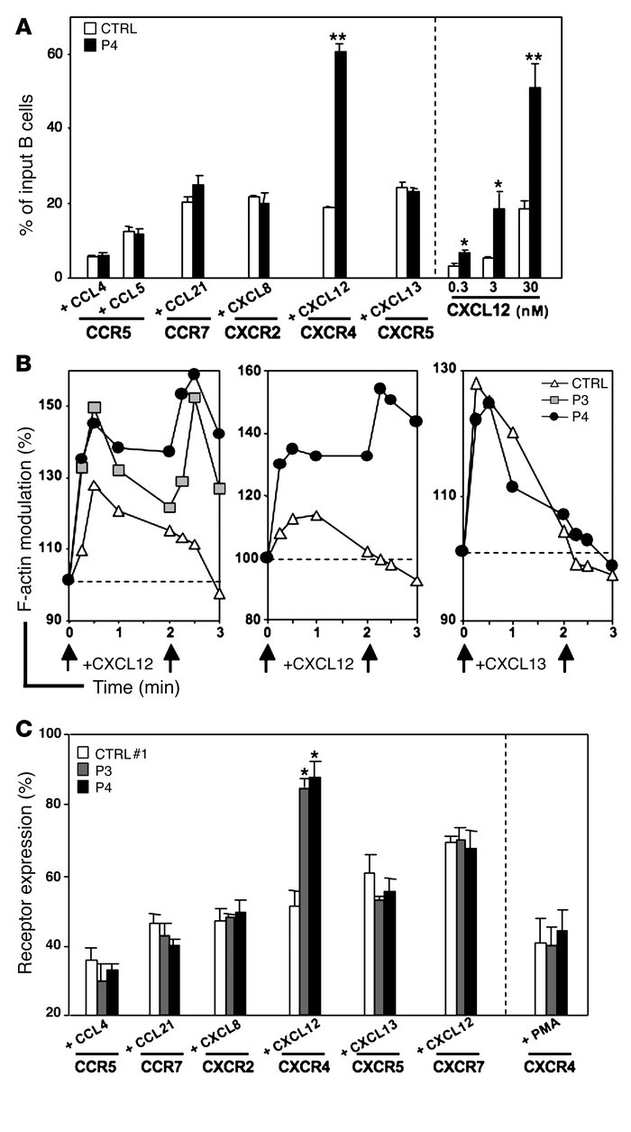 Analysis of CXCR4 expression in WHIMWT-derived cells.                 (A...