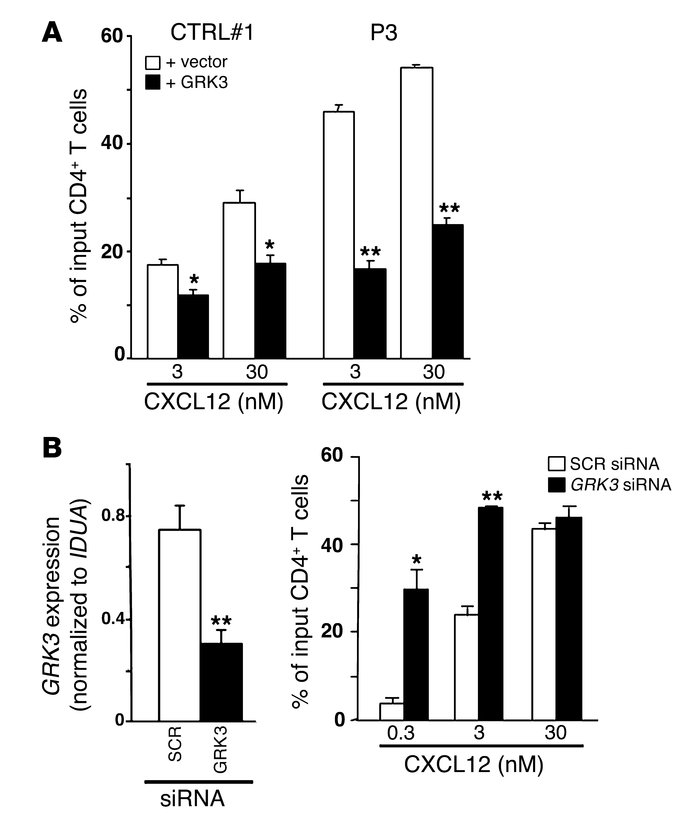 Consequences of GRK3 expression or knock-down on CXCL12-promoted chemota...
