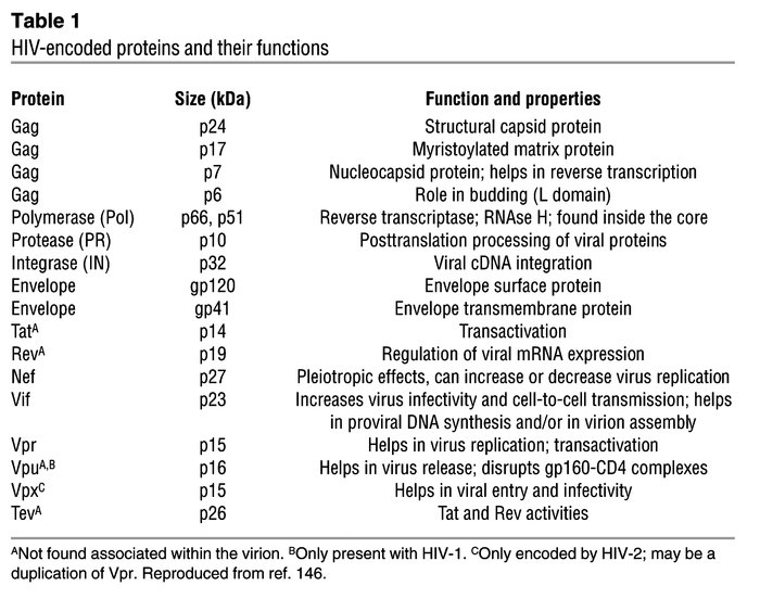 HIV-encoded proteins and their functions