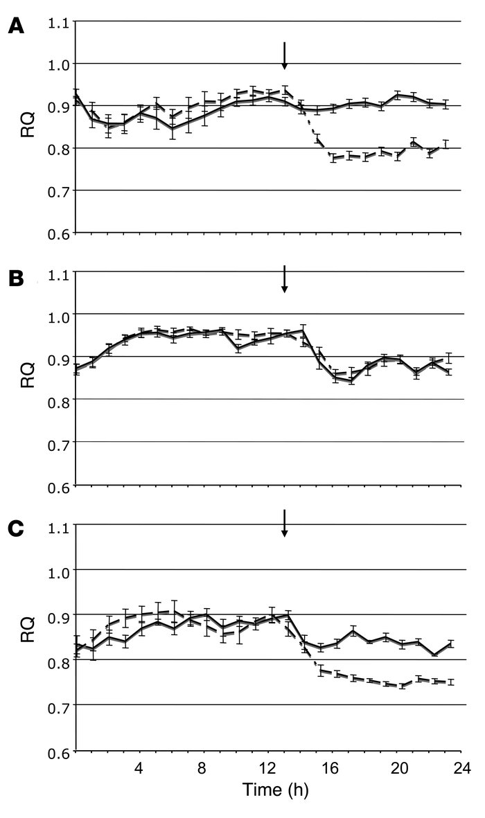 The effect of rimonabant on RQ in regular chow–fed mice, as monitored by...