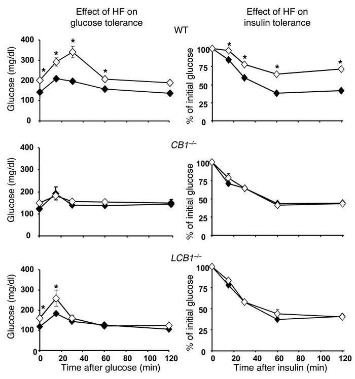 Effect of piperine in the regulation of obesity-induced dyslipidemia in high-fat diet rats