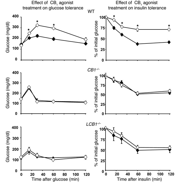 Acute treatment of regular chow–fed mice with a CB1 agonist induces gluc...
