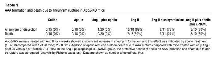 AAA formation and death due to aneurysm rupture in ApoE-KO mice