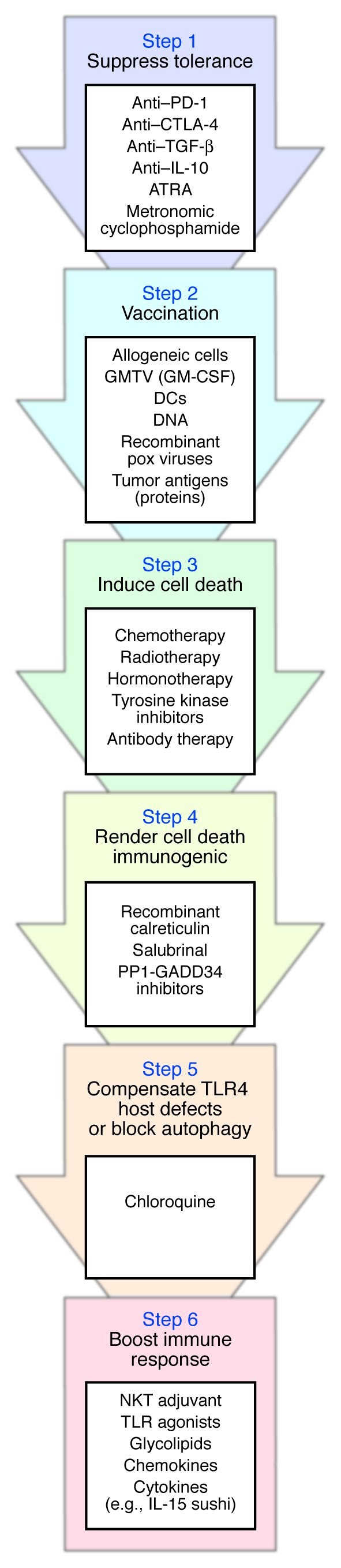 Steps required for successful cancer immunotherapy. The immune system of...