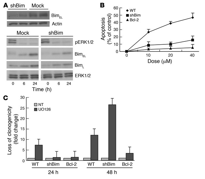 MEK inhibition–induced apoptosis of B-RAF mutant tumor cells can be inhi...