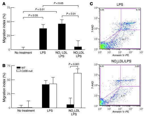 Macrophage migration in vivo is inhibited by NO2LDL in a CD36-dependent ...