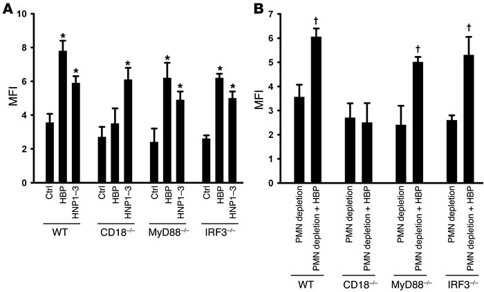 Enhanced phagocytosis mediated by HBP depends on CD18 but not TLR signal...