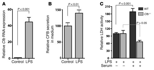 Cfb is induced by LPS in cardiomyocytes.     (A) LPS induces Cfb transc...