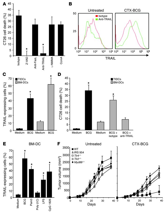 BCG activated human Mo-DCs are cytotoxic against human cell lines in a T...