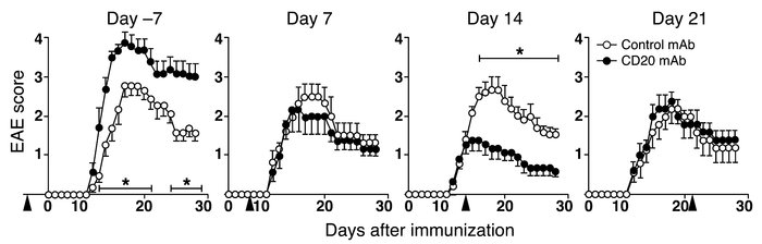 B cells regulate EAE severity. B6 mice were treated with CD20 or control...
